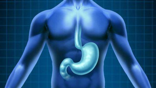 Рентген кишечника с барием: показания, проведение обследования, противопоказания и преимущества метода
