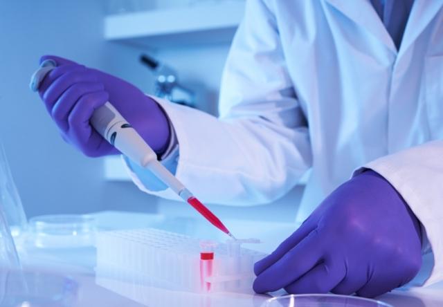 Токсокароз: симптомы, лечение, анализ крови на токсокароз