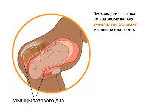 Боли в животе после родов: виды и их причины, опасные признаки