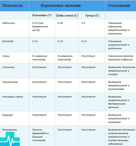 Анализ на флору у женщин: подготовка, процедура и расшифровка мазка