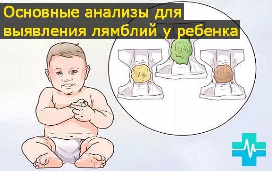 Лямблии в кале у ребенка: причины и методика лечения лямблиоза