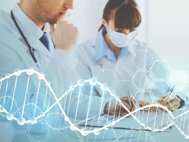 Когда сдавать анализы на гормоны мужчинам и женщинам: назначение и расшифровка результатов
