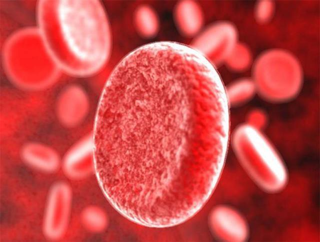 Общий белок в крови повышен - основные причины и возможные осложнения