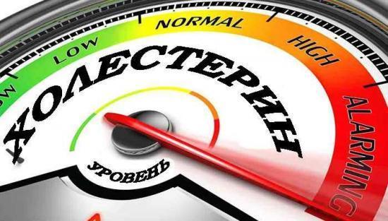 Биохимия крови: откуда берут кровь и как правильно подготовиться к анализу