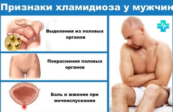 Хламидии: микробиология, симптомы и лечение хламидиоза