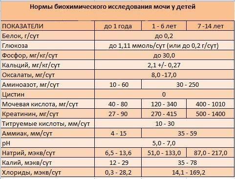 Общий анализ мочи - подготовка к анализу и расшифровка его основных показателей