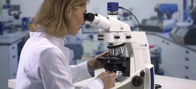 Низкий уровень лейкоцитов в крови: причины, нормализация и возможные осложнения