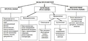 Суточный белок в моче: норма и причины повышения показателя