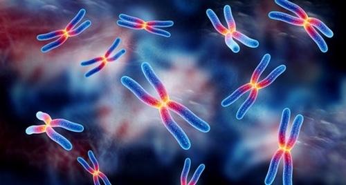 Воротниковое пространство у плода на 12 неделе: диагностика, норма и возможные патологии хромосомного характера