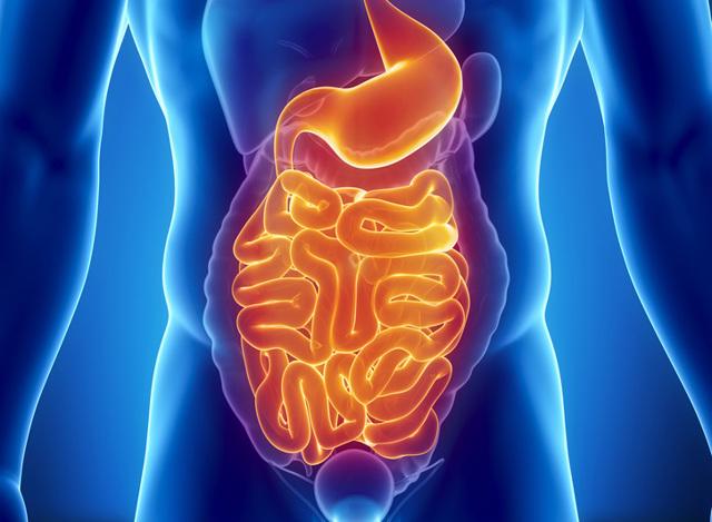 Методы обследования тонкого кишечника и особенности их проведения