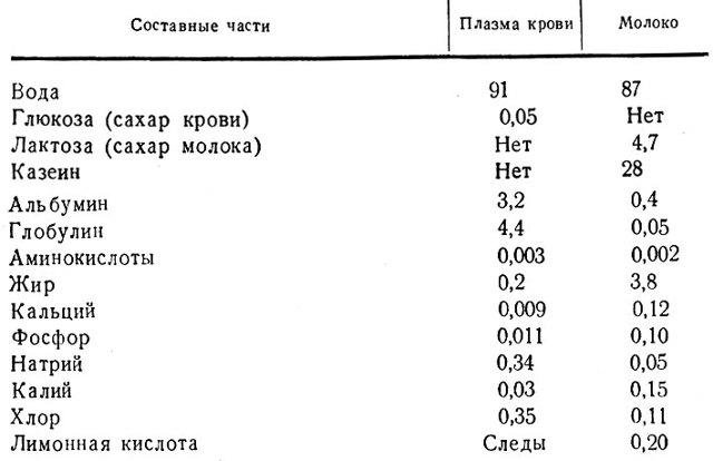 Химический состав крови человека: диагностика и расшифровка показателей