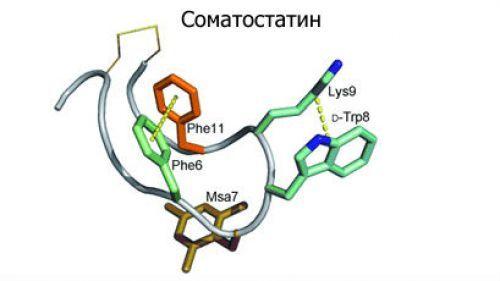 Какие гормоны вырабатывает поджелудочная железа: виды и их значение