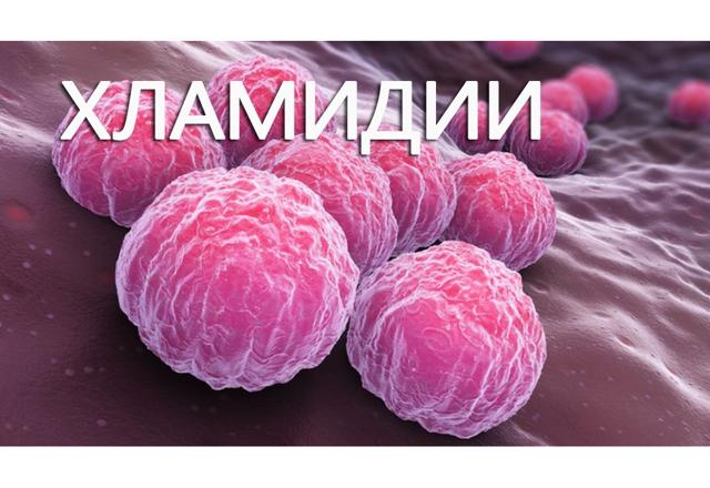 Хламидии, уреаплазма и микоплазма: причины, симптомы и методы лечения