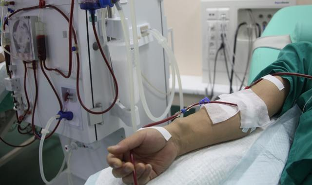 Анализ крови на ЛДГ - назначение, процедура и расшифровка результатов исследования