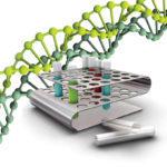 Генотипы вируса гепатита С, их подтипы и разница между ними