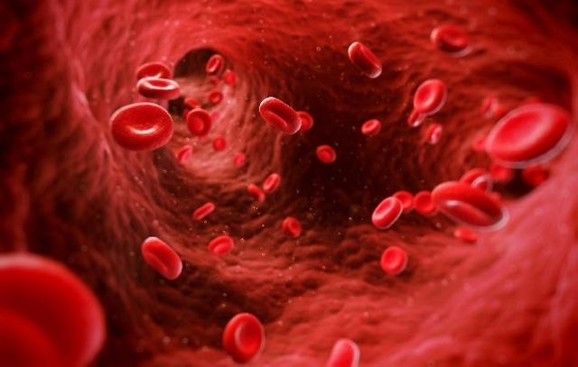 Как повысить эритроциты в крови: лучшие советы и рецепты