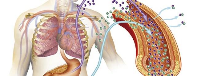 Онкомаркеры молочной железы: виды онкомаркеров, диагностика и расшифровка результатов исследования