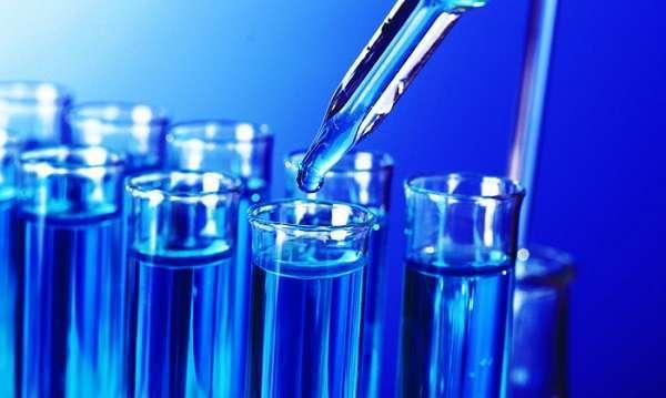 Лямблии - анализ крови, пути заражения, симптоматика, методы лечения и профилактика