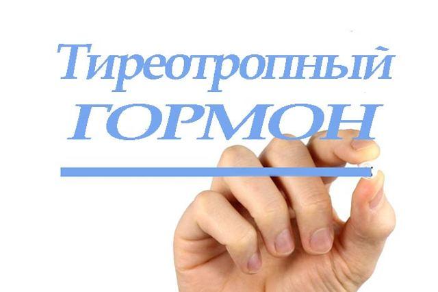 Как правильно сдать анализ ТТГ: назначение, правильная подготовка к анализу и расшифровка результатов исследования