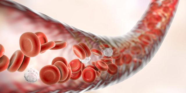 Расширенный анализ крови - значение и норма основных показателей
