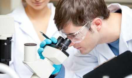 Общий белок в крови понижен: возможные причины и способы нормализации показателя